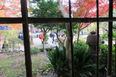 九八屋から見た松原の紅葉