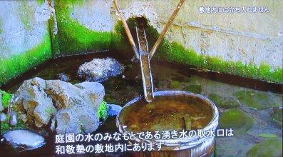 泉水の源は、和敬塾の湧水
