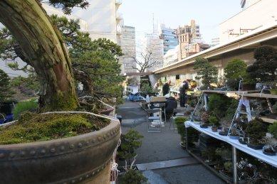 上野グリーンクラブの光景3