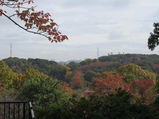 緑地展望台から秋