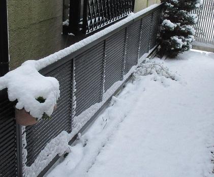 1月15日積雪3