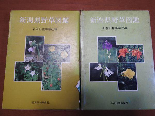 DSCN3426.jpg
