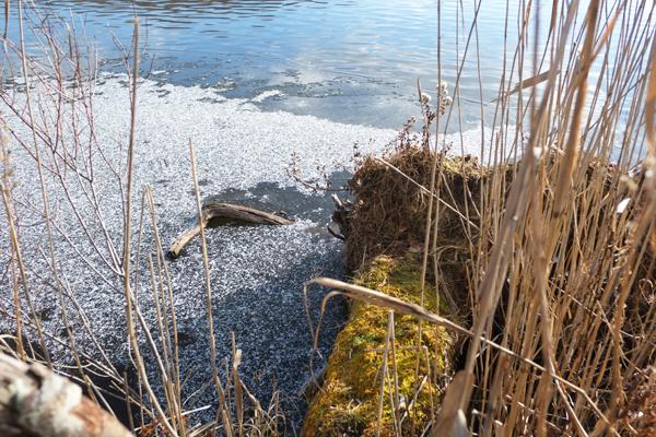 ポロト湖でカヌー25