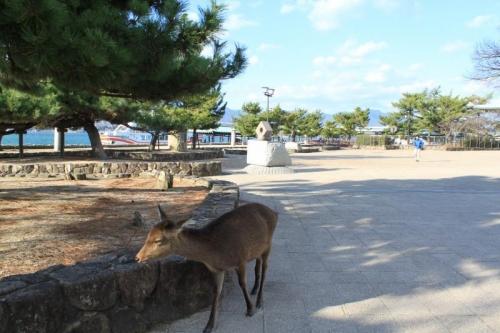 広島への旅⑪