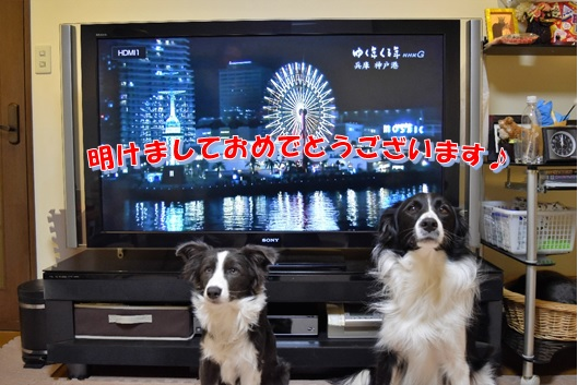 2_20170101003652ff3.jpg