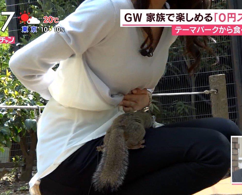 TBS「あさチャン」ロケでリスにおっぱいを吸われる宇垣美里