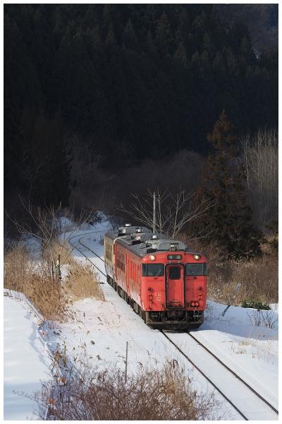 P2051409-2o.jpg
