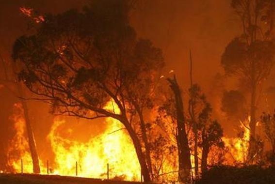 2009年 オーストラリア山火事