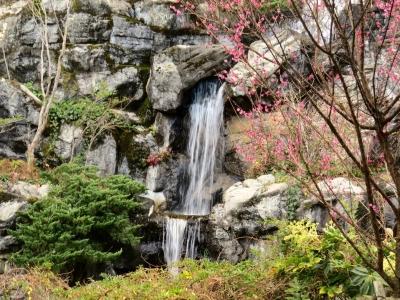 梅見の滝b_1