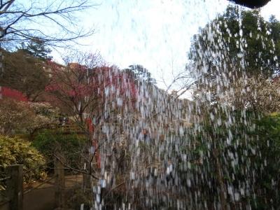 梅見の滝c_1