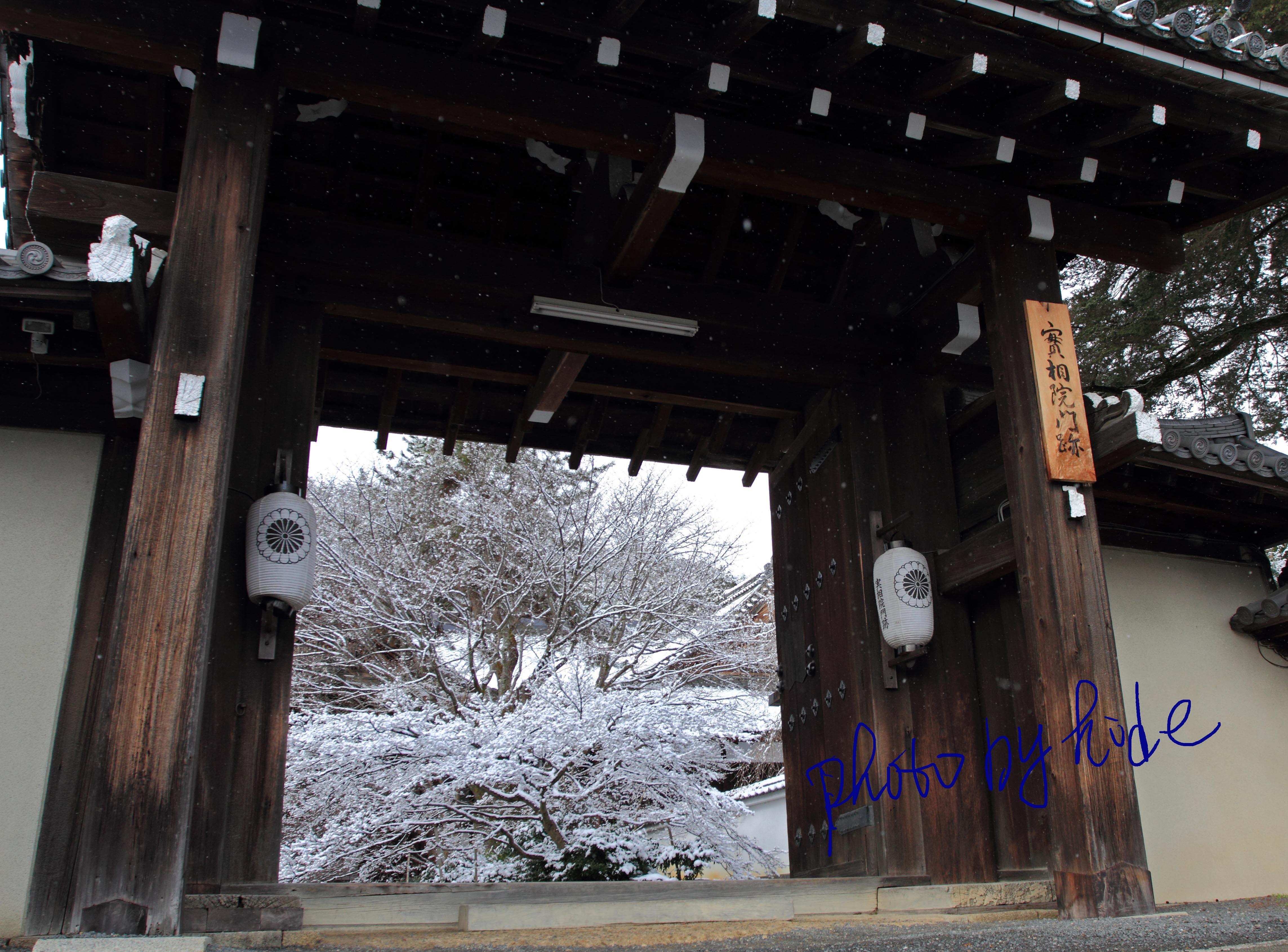 京都実相院1_edited-1