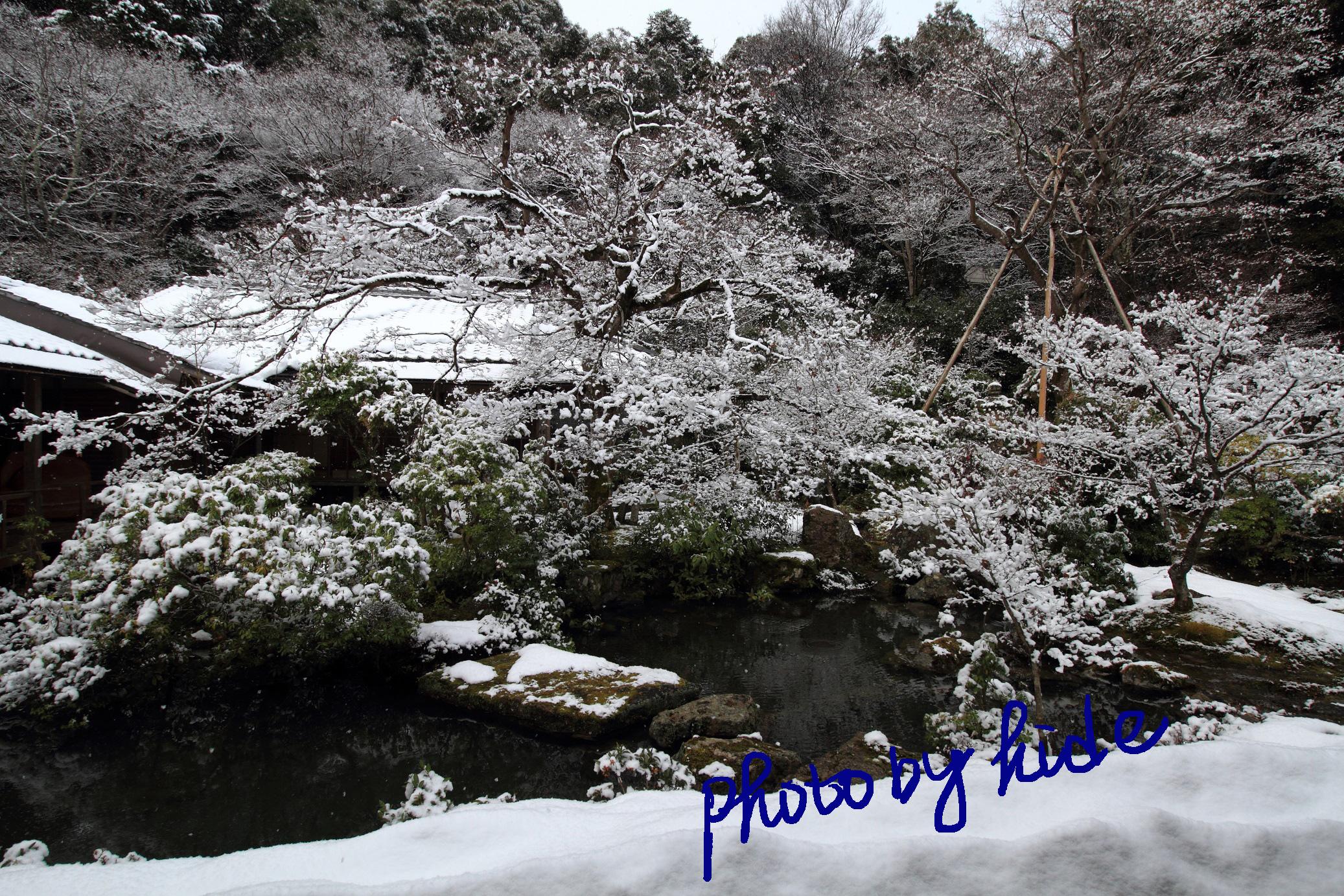 京都実相院5