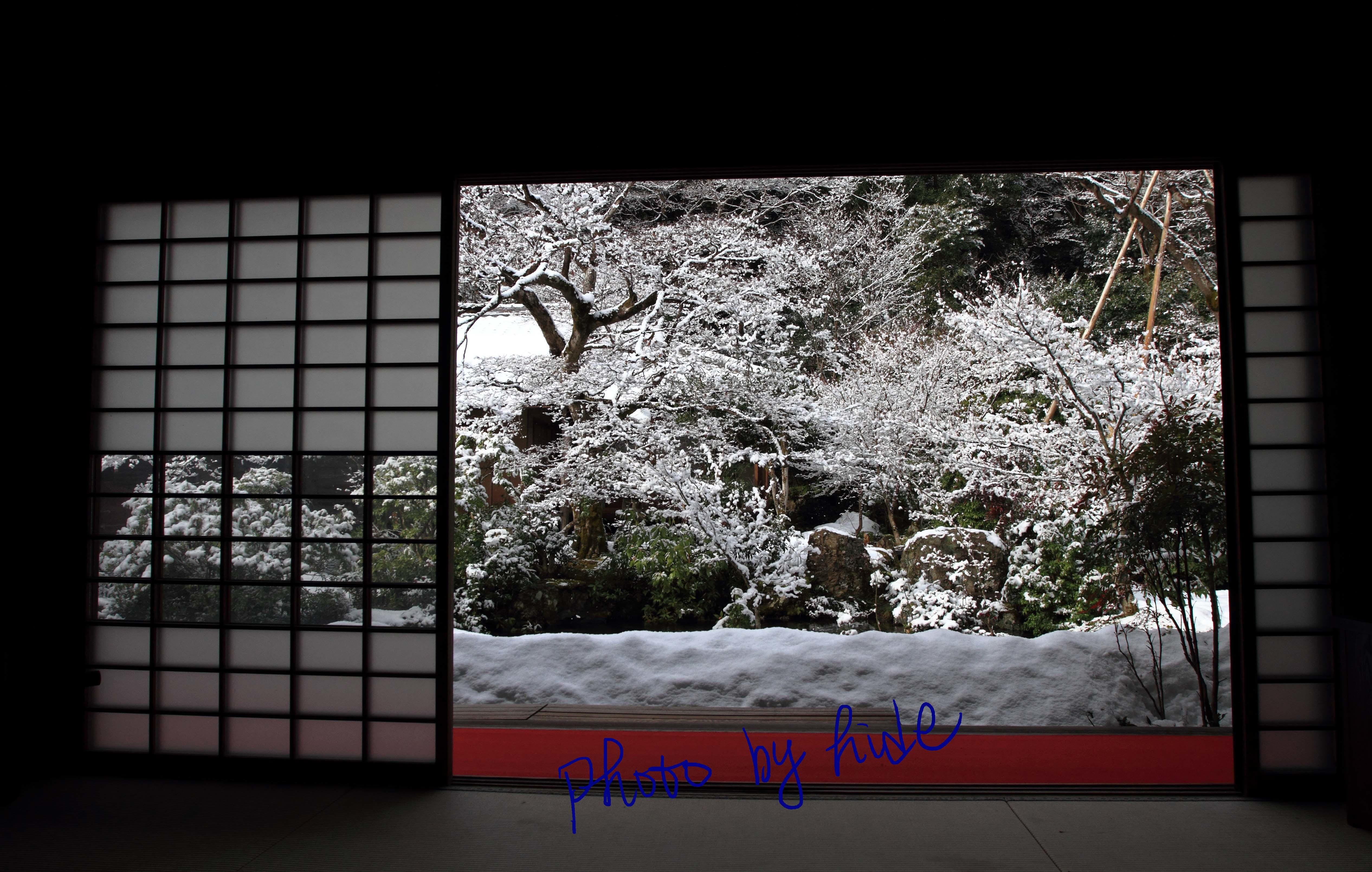 京都実相院10_edited-1