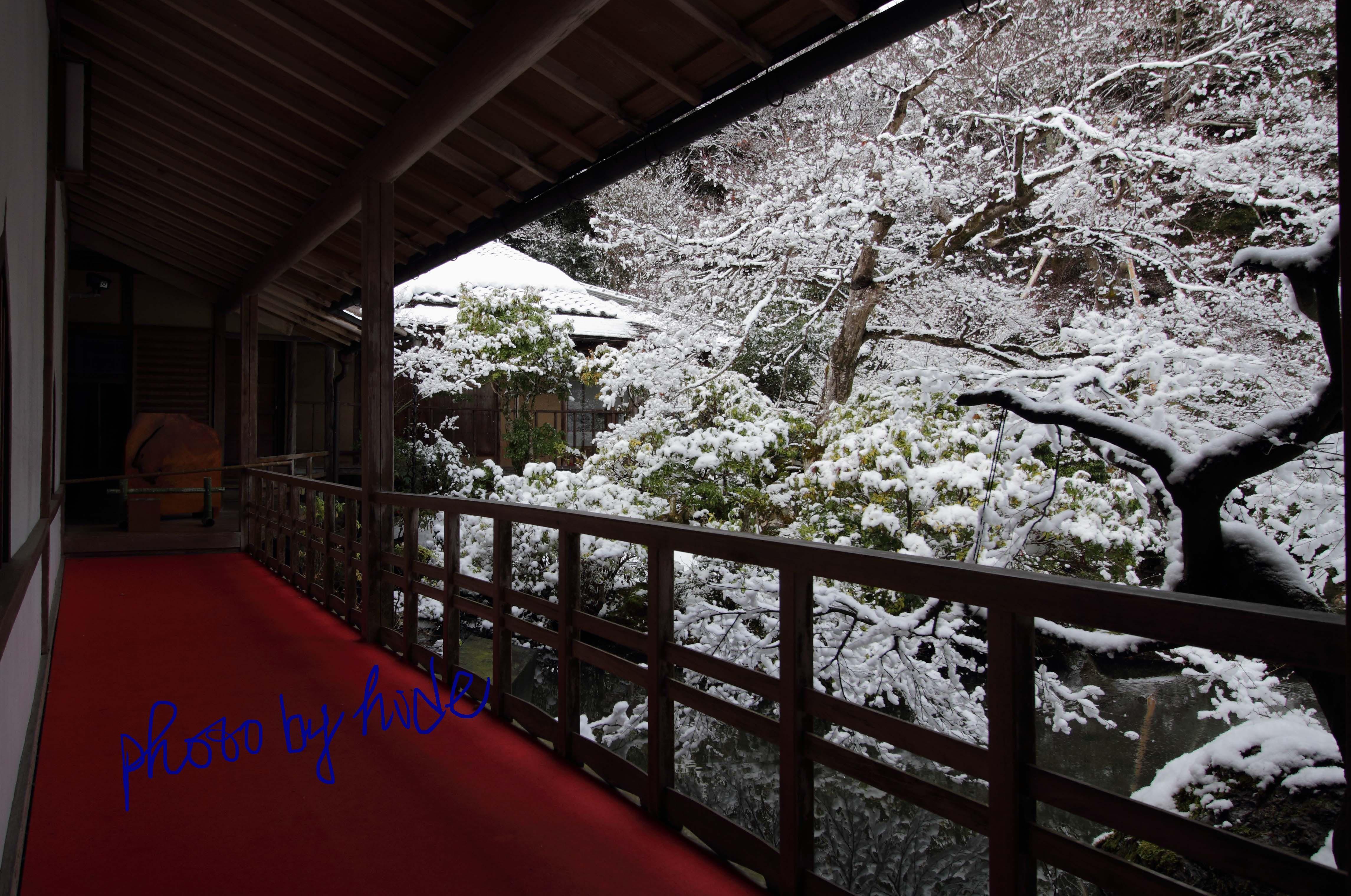 京都実相院17