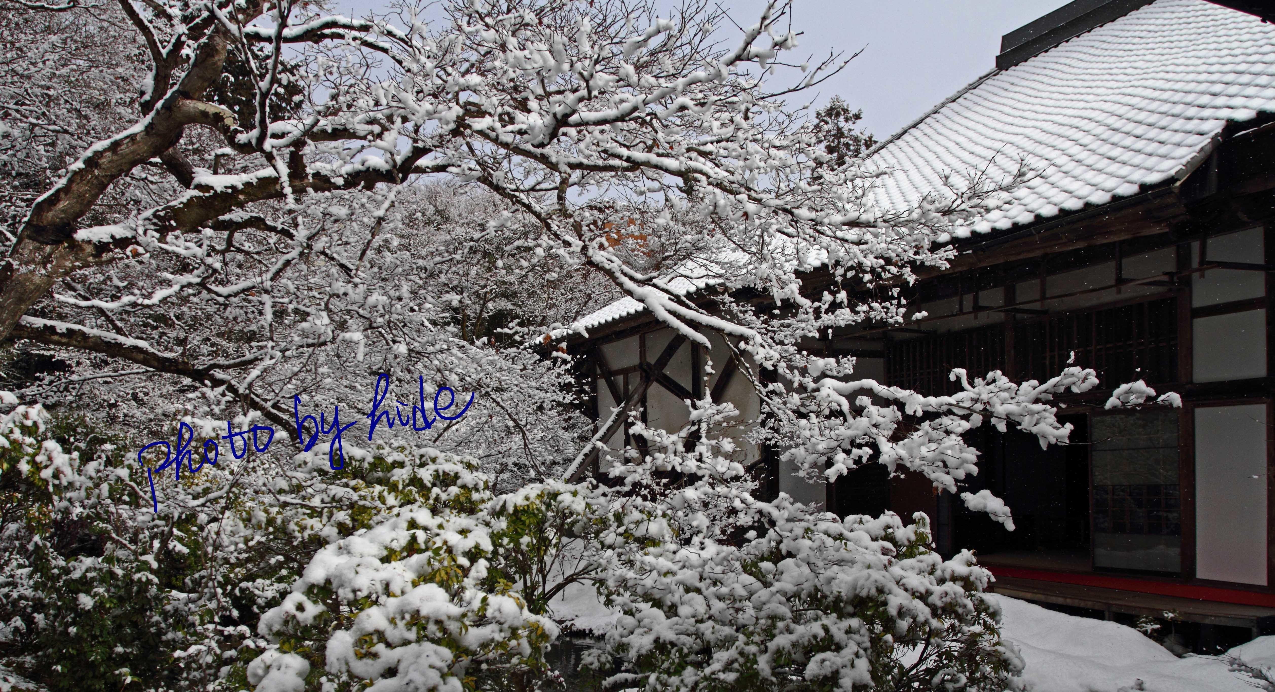 京都実相院19
