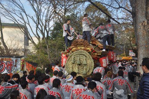 shimenawa201701003_R.jpg