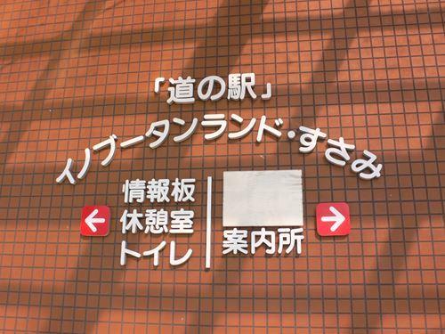 susamiinobuta1212005_R.jpg