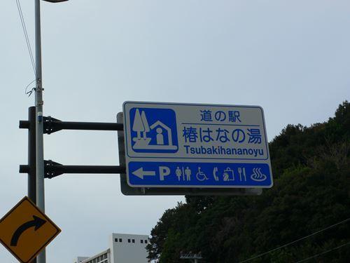 tsubakihananoyu1212002_R.jpg