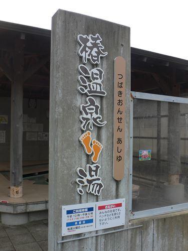 tsubakihananoyu1212010_R.jpg