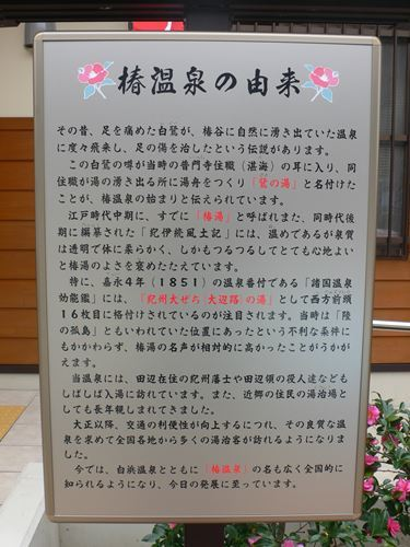 tsubakihananoyu1212012_R.jpg