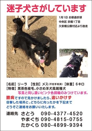 web_leela.jpg