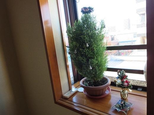 物悲しいクリスマスツリー