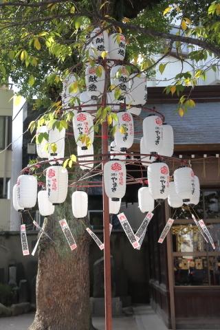 20161202yoisai5.jpg