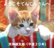 Taro_Tenjin.jpg