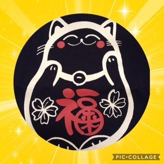 小畑先生の猫