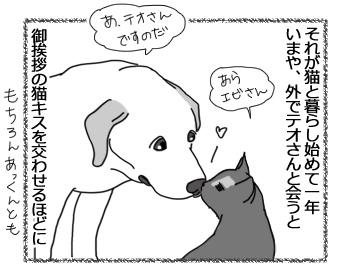 羊の国のラブラドール絵日記シニア!!「違いのわかるオトコ?」2