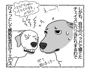 羊の国のラブラドール絵日記シニア!!「嫉妬記念日?」4
