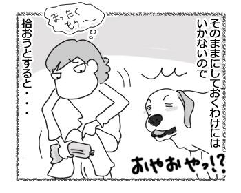 05012017_dog2.jpg