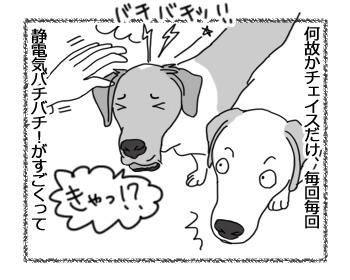 羊の国のラブラドール絵日記シニア!!「インスタント溝」3