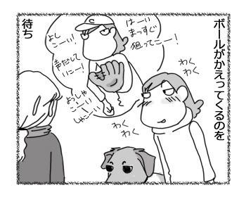 08022017_dog3.jpg