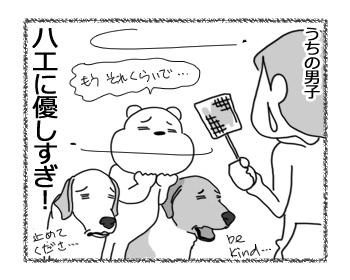 09022017_dog4.jpg