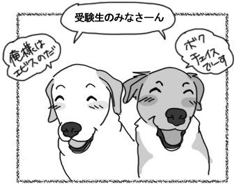 14012017_dog1.jpg