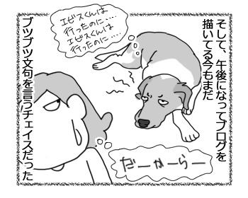 16012017_dog6.jpg