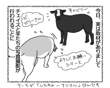 羊の国のラブラドール絵日記シニア!!「大失態と大成功」1
