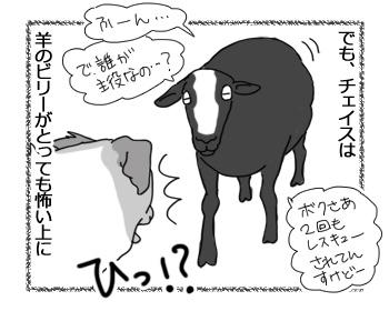 羊の国のラブラドール絵日記シニア!!「大失態と大成功」2
