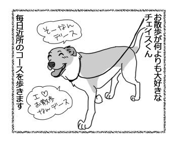 26012017_dog1.jpg