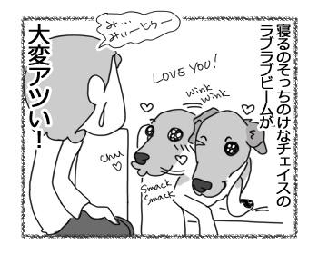 26012017_dog4.jpg
