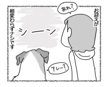 羊の国のラブラドール絵日記シニア!!「ふぁいとー!いっぱぁつ!」3