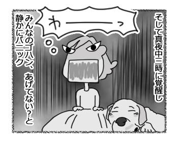 29012017_dog3.jpg