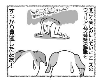 29012017_dog5mini.jpg