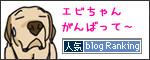 29112016_dogbanner.jpg