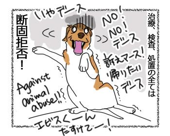 30012017_dog5.jpg