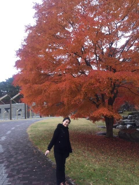 iwate70.jpg