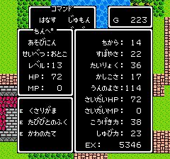 dq3hs (36)