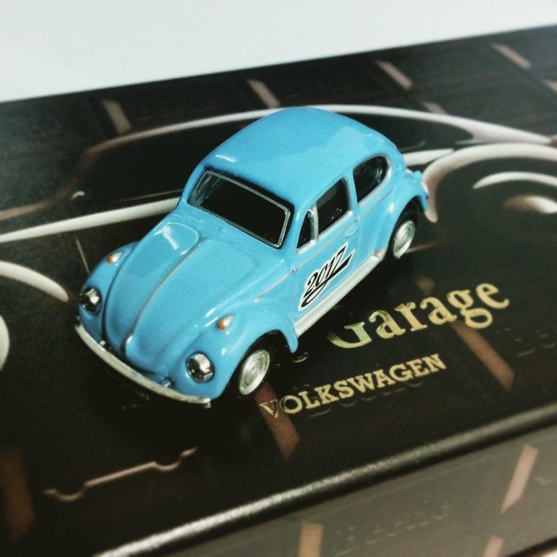 beetle_g03.jpg