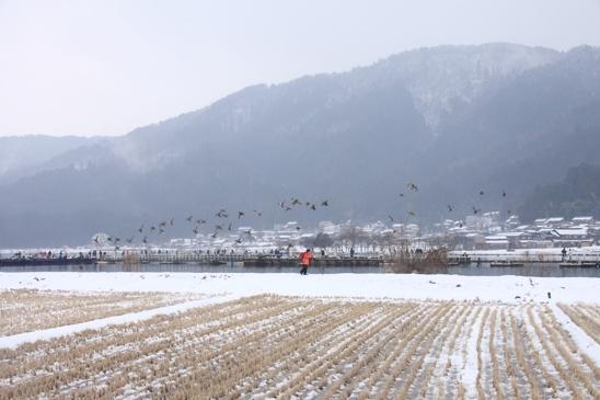 IMG_5596余呉湖小